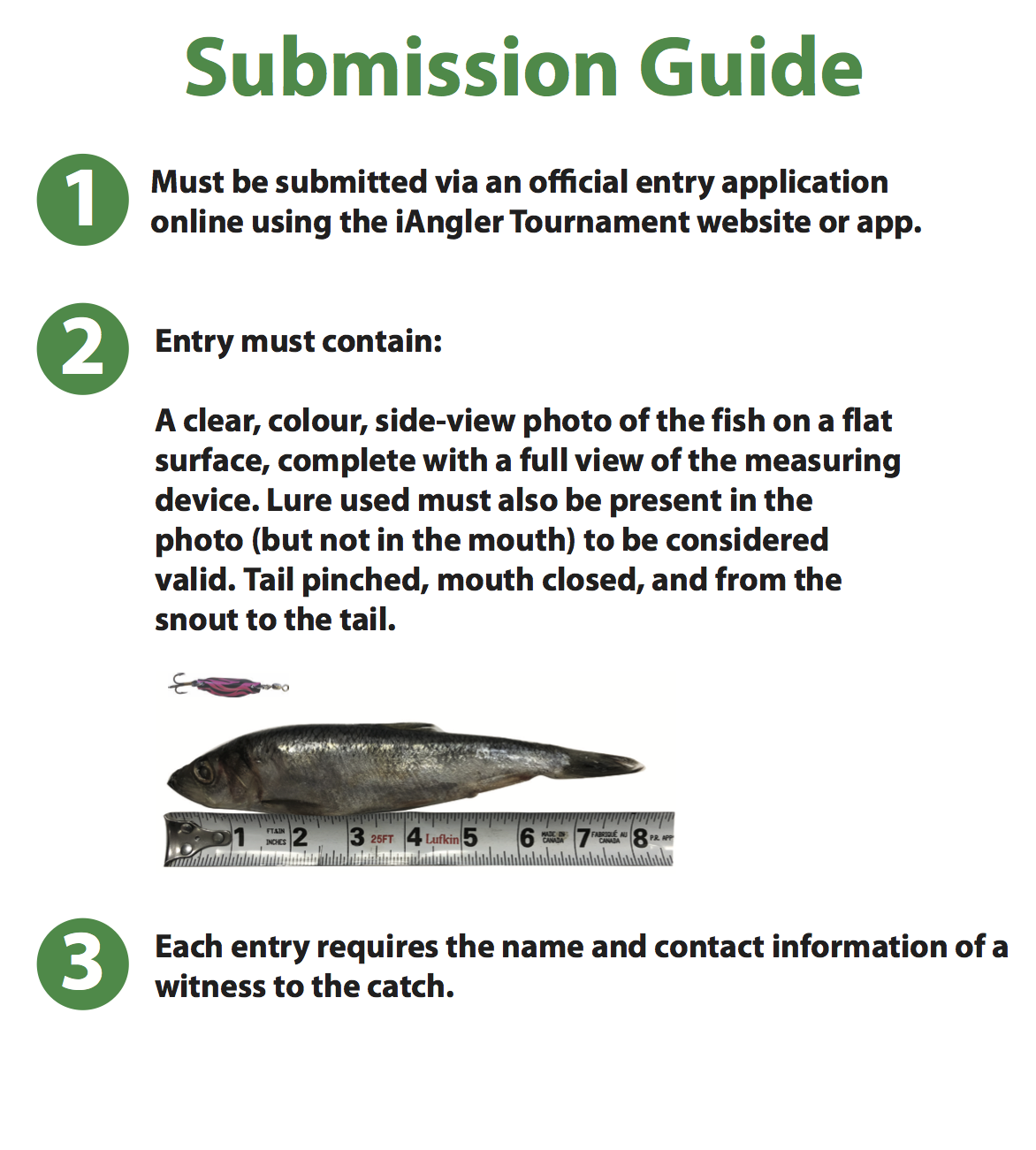 Battle of the Brands - Catch Submission Guide